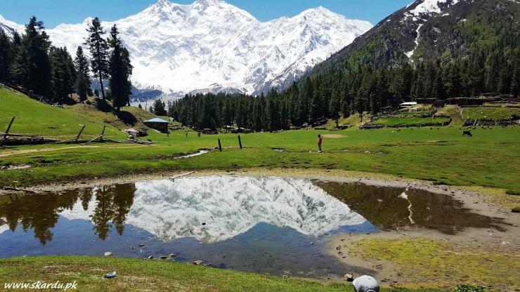 Fairy-meadows-Nanga-Parbat-