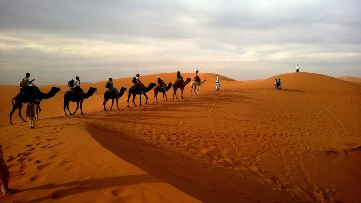 desert-safari (1)